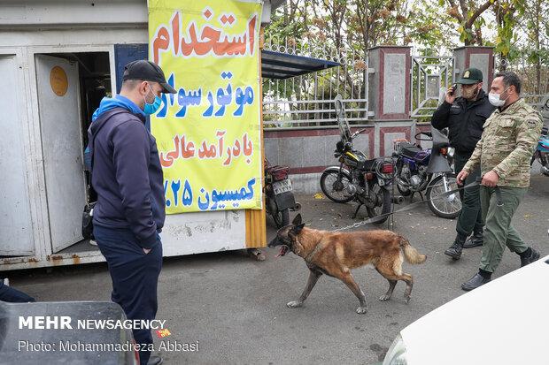 پولیس کے سرچ کتوں کے ذریعہ منشیات کی نشاندہی کے منصوبے پر عمل درآمد