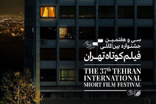 فیلم های ایرانی حاضر در مسابقه بین الملل جشنواره فیلم کوتاه تهران