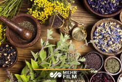تقویت ایمنی بدن با ۴ گیاه