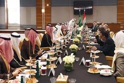 الاستثمار السعودي تخريب