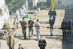 At least 140 Palestinians contract COVID-19 in Israeli jails