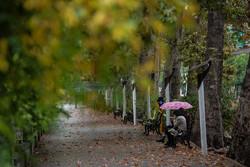 کاهش ۴۷ درصدی بارندگی در خراسان شمالی