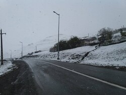 بارش برف و مه گرفتگی در محور هراز/ترافیک روان است