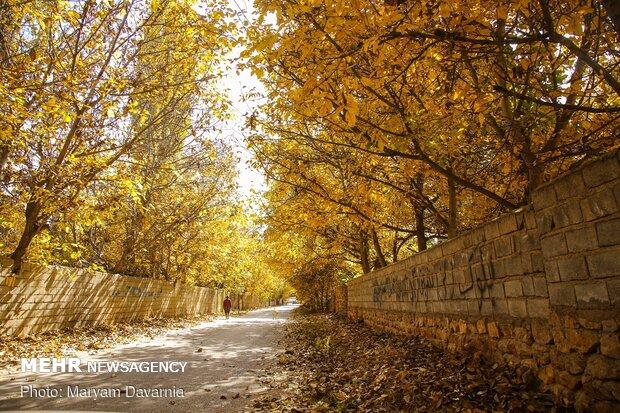 جلوه های پاییزی در خراسان شمالی