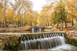 Kuzey Horasan'da büyüleyici sonbahar fotoğrafları