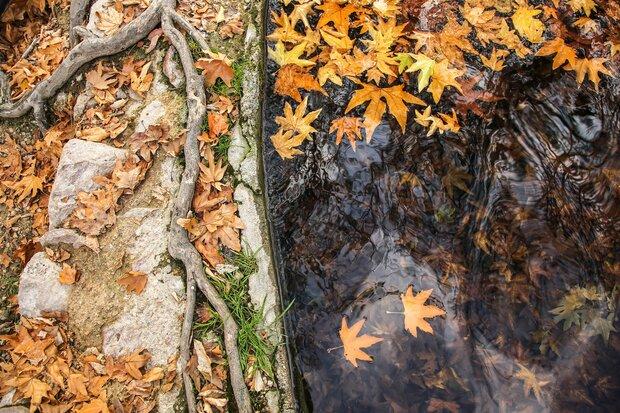 جلوه های پاییزی درخراسان شمالی