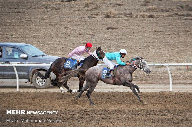 برگزاری مسابقات سوارکاری در بجنورد با حضور ۴۲ اسب سوار