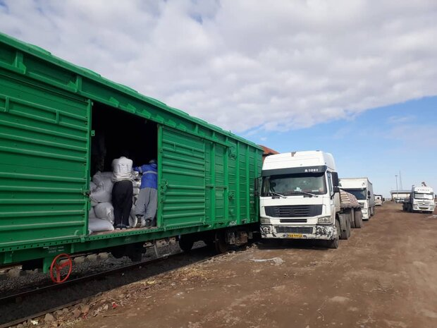 Golestan exports fall to $80 million in 9 months