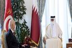 رئیس جمهور تونس با امیر قطر دیدار کرد