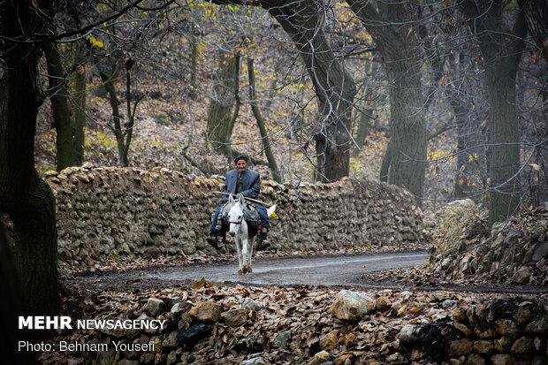 ماسوله استان مرکزی ( روستای وفس )