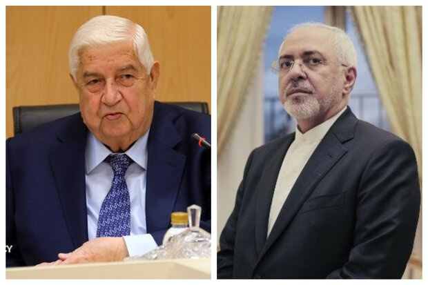 Zarif condoles with Syria over his counterpart's demise