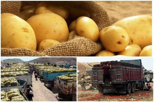 داستان کامیونهای معطل پشت مرزها/ماجرای سیبزمینیها به کجا رسید؟