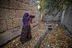 پاییز دل انگیز در کوچه های کاهگلی یزد