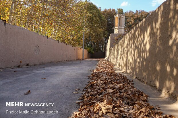 Autumn in thatched alleys of Yazd