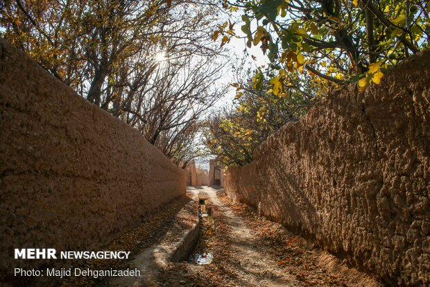 İran'da sonbahar fotoğrafları