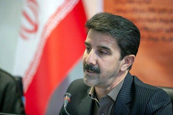 برداشت ۱۷۰۰ کیلو طلای سرخ در کرمانشاه