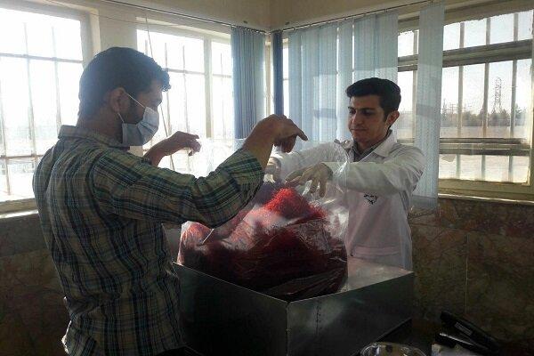خریداری بیش از ۶۰۰ کیلو زعفران از کشاورزان تایبادی