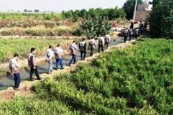 رزمایش جهادی جهش تولید در بخش کشاورزی خوزستان برگزار شد