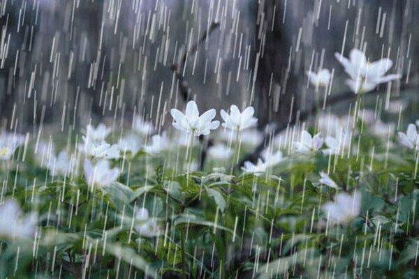 بارش ۶۴ میلیمتری باران در هندیجان
