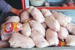 تقاضای مردم برای خرید مرغ ۷۰ درصد کاهش یافت/ صفهای طولانی نتیجه سیاستهای غلط است