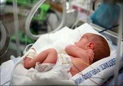 تاثیر پروبیوتیک ها در افزایش تنوع باکتری های روده نوزادان زودرس