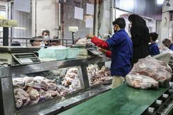 مرغ از سفره مردم پر کشید/ پرواز قیمت ها در کرمان