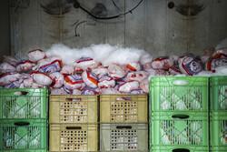 احتکار فیله های مرغ در کارگاه آهنگری/ متهمان دستگیر شدند
