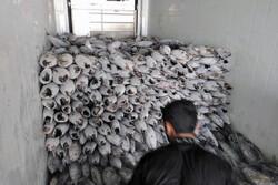 ۵ تن ماهی قاچاق در پارسیان کشف شد