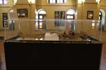 زن نمکی مومیاییشده در موزه/ بازهم تخریب بنای تاریخی در تهران