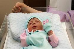 روزانه بیش از ۶۵ نوزاد در کرمانشاه متولد می شود