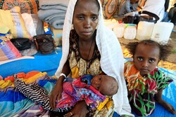 'Tens of thousands' could die of starvation in Tigray