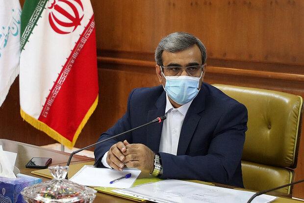 ساخت باغ ایران زمین درکیش فرصتی برای معرفی فرهنگ ایرانی