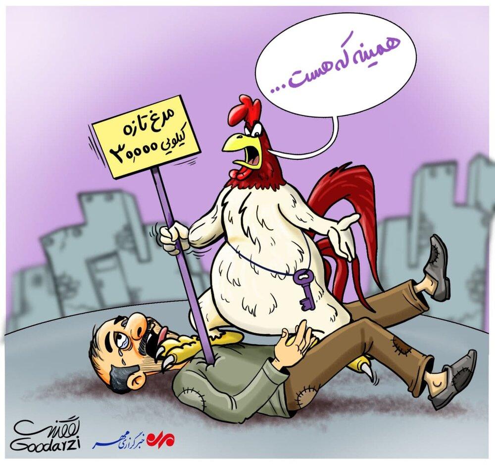 مرغ به جان مردم افتاد