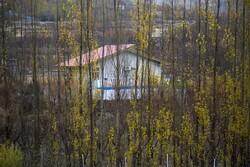 طبیعت پاییزی شهر و روستاهای سنندج