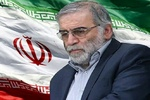 Intl. reactions to assassination of Iranian top scientist