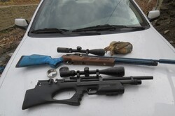 ۳ شکارچی کبک در مناطق حیاتوحش دامغان دستگیر شدند
