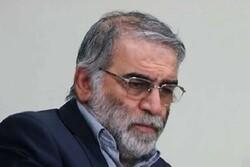 UAE, Jordan condemn assassination of Iranian scientist