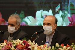 مسعود سلطانیفر: از همه ظرفیتهای حقوقی برای پرونده ویلموتس استفاده شد
