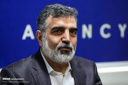 No past meeting between martyr Fakhrizadeh, IAEA officials
