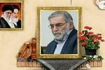 """نجل الشهيد """"فخري زاده"""" يتحدث عن تفاصيل عملية اغتيال والده في طهران"""