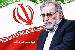 دلنوشته هنرمندان تئاتری در محکومیت ترور شهید محسن فخریزاده