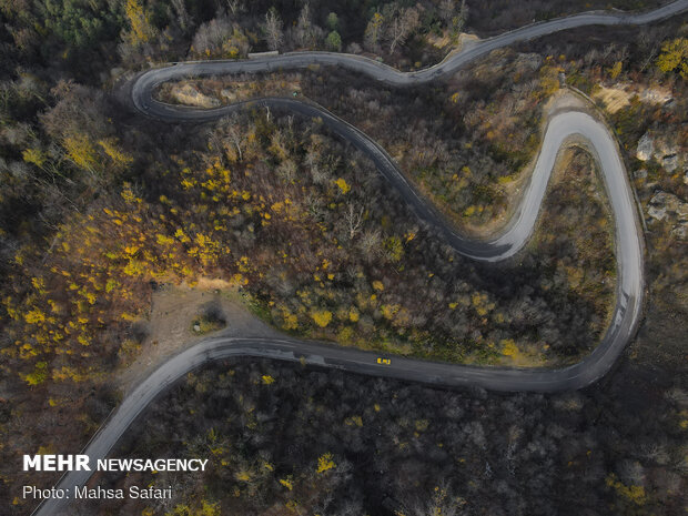Astonishing bird's eye view of Hyrcanian forests
