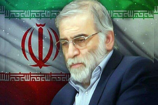 Iraqi elites condemn assassinating Iran's scientist