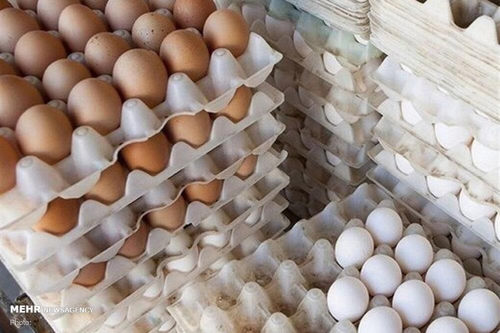 طوفان تخم مرغ در بازار/ چرا قیمت از ۵۰ هزار تومان گذشت؟