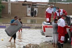کمکرسانی به ۲۵۰ خانواده در استان بوشهر انجام شد