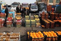 بسته بندی مناسب محصولات کشاورزی در چهارمحال و بختیاری ضروری است