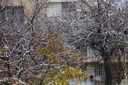 برف و باران در راه خراسان رضوی