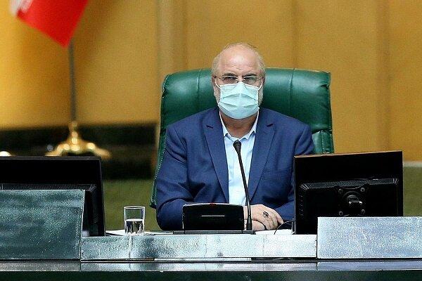 مجلس نباید به تعیین معیارهای مدیر و مدبر بودن کاندیداها ورود کند
