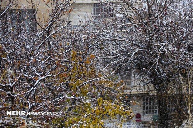 البرز از یکشنبه برفی میشود/ تداوم آلودگی هوا