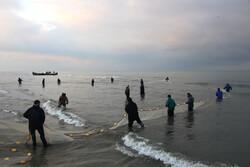 تلاش صیادان گیلان برای کسب روزی حلال از دریا